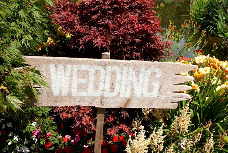 oklahoma city wedding officiant