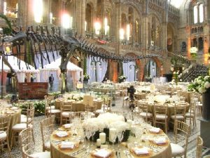 Manchester Natural History Museum Wedding