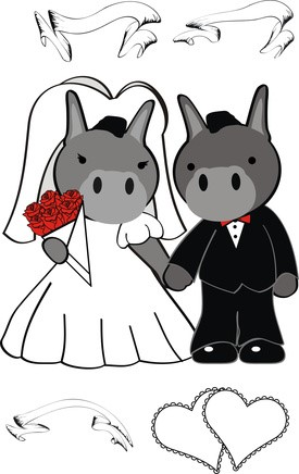 donkey cat wedding